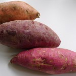 Bataat zoete aardappel