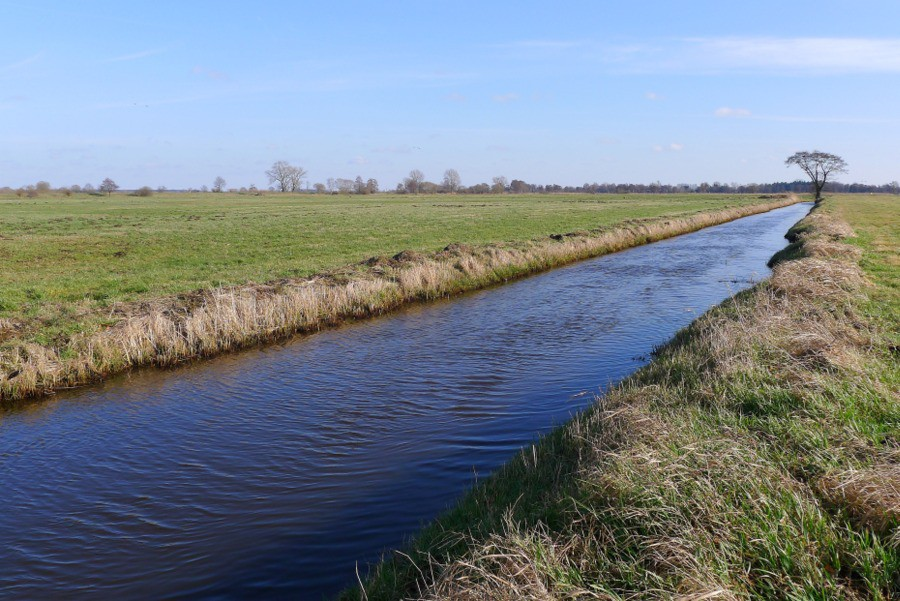 Nederlands landschap met weilanden en sloten in Bremen Oberneuland