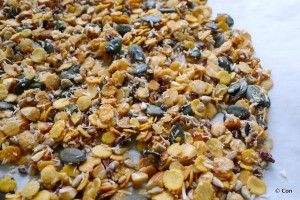 granola low carb vetvrij
