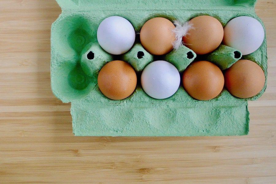 Bruine of witte eieren, wat is het verschil? ~ minder koolhydraten, maximale smaak ~ www.con-serveert.nl